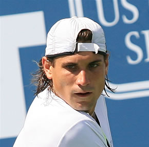Picture of David Ferrer - ferrer-head1.jpg