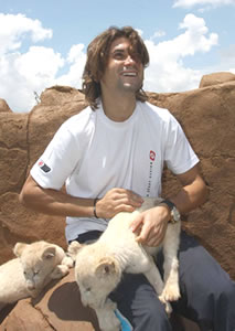 Picture of David Ferrer - ferrer-lions91.jpg