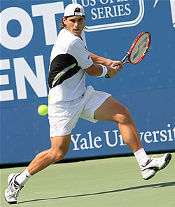 Picture of David Ferrer - ferrer-nh1.jpg