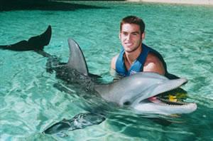 Picture of Robby Ginepri - ginepri_dolphin.jpg