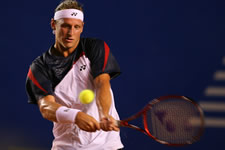 Picture of David Nalbandian - nalbandian-aca91.jpg
