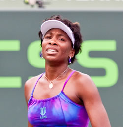 Picture of Venus Williams - venus-miamis1.jpg